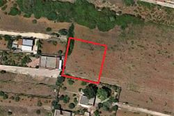Agricultural land of  ,    square meters - Lote 10004 (Subasta 10004)