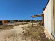 Immagine n3 - Capannoni industriali con corte di pertinenza - Asta 10007