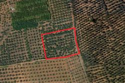 Agricultural land of   ,    square meters - Lot 10035 (Auction 10035)