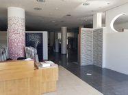 Immagine n1 - Locale espositivo e negozio - Asta 10066