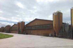 Large livestock complex - Lot 10123 (Auction 10123)