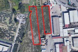 Terreno edificabili zona artigianale - Lotto 10124 (Asta 10124)