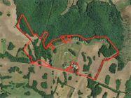 Immagine n0 - Complesso residenziale-sportivo con villini e terreni - Asta 10131