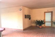 Immagine n3 - Commercial premises in the center - Asta 10279