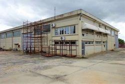 Capannone con uffici, tettoie e centrale elettrica - Lotto 10294 (Asta 10294)