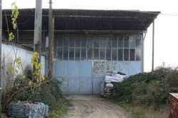 Agricultural shelter - Lote 10306 (Subasta 10306)