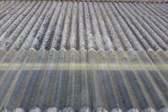 Immagine n5 - Porzione di capannone (sub 16) e cortile - Asta 1033