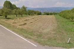 Cinque appezzamenti di terreno agricolo - Lotto 10336 (Asta 10336)