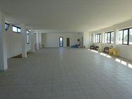 Immagine n12 - Opificio industriale con cortile privato - Asta 1042