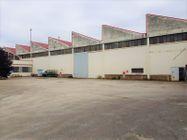 Immagine n3 - Opificio industriale con area di pertinenza - Asta 10482