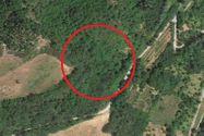Immagine n0 - Quota 1/2 di terreno per seminativo e vigneto - Asta 1052