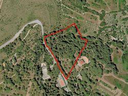Terreno boschivo di 29.235 mq - Lotto 10552 (Asta 10552)