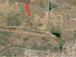 Agricultural land of  ,    sqm - Lot 10555 (Auction 10555)