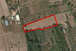 Agricultural plot of      sq m - Lot 10639 (Auction 10639)