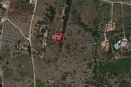 Immagine n0 - Single-family house with land - Asta 10672