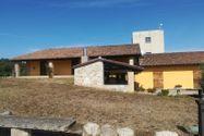 Immagine n0 - Azienda vitivinicola con terreni agricoli - Asta 10800