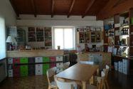 Immagine n3 - Azienda vitivinicola con terreni agricoli - Asta 10800