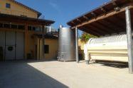 Immagine n6 - Azienda vitivinicola con terreni agricoli - Asta 10800