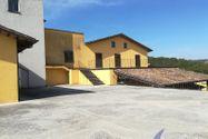 Immagine n9 - Azienda vitivinicola con terreni agricoli - Asta 10800