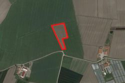 Agricultural land of   ,    square meters - Lot 10836 (Auction 10836)