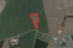 Terreno agricolo di 18.715 mq - Lotto 10836 (Asta 10836)