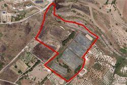 Complesso rurale con serre e lago artificiale - Lotto 11014 (Asta 11014)