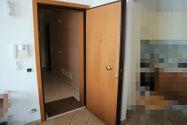 Immagine n1 - Appartamento con giardino, cantine e garage - Asta 11042