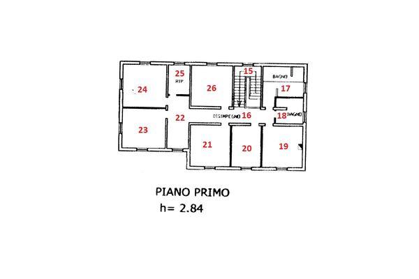 Immagine n2 - Planimetria - Piano primo - Asta 11102