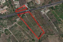 Terreni agricoli di 13.171 mq con fabbricati rurali