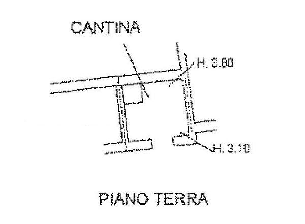 Immagine n0 - Planimetria - Piano terra - Asta 1115