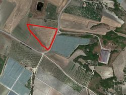 Agricultural land of   ,    sqm - Lot 11165 (Auction 11165)