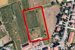 Agricultural plot in a residential area - Lot 11167 (Auction 11167)