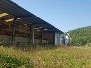 Immagine n5 - Capannone con uffici, oltre a cava e terreni agricoli - Asta 11193