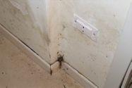 Immagine n7 - Appartamento duplex al grezzo (sub 32) - Asta 11478