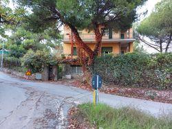 Appartamento al piano terra con giardino - Lotto 11528 (Asta 11528)