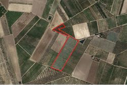 Agricultural land of       sqm - Lot 11555 (Auction 11555)
