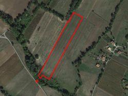 Terreno agricolo di 21.403 mq - Lotto 11686 (Asta 11686)