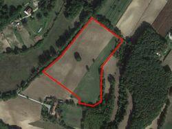 Terreno agricolo di 36.410 mq - Lotto 11687 (Asta 11687)