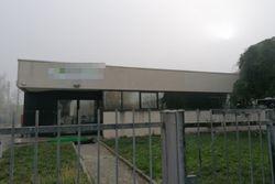 Capannone con area esclusiva - Lotto 11716 (Asta 11716)