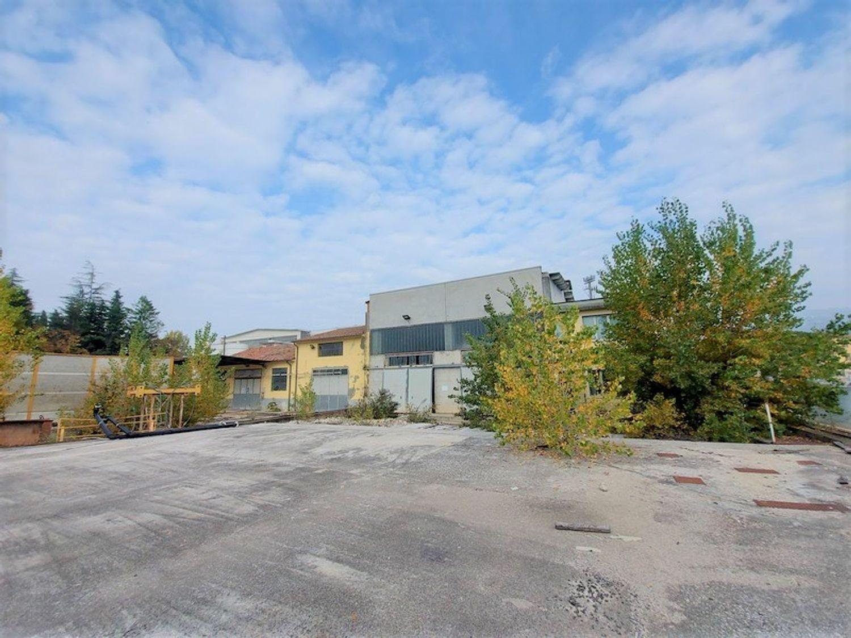 #11738 Complesso con 2 capannoni, uffici oltre piazzali di deposito in vendita - foto 7