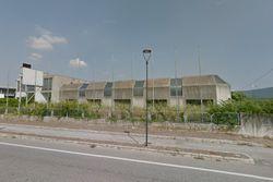 Capannone con uffici e magazzino - Lotto 11939 (Asta 11939)