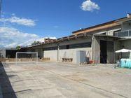 Immagine n12 - Capannone showroom, magazzino e due abitazioni - Asta 1196