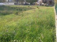 Immagine n4 - Lotto edificabile di 866 mq in area urbanizzata - Asta 1199