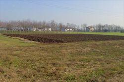 Terreni seminativi arborati di 7815 mq - Lotto 12292 (Asta 12292)
