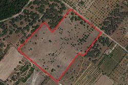 Terreni agricoli - Lotto 1 -  - CT - Lotto 12612 (Asta 12612)