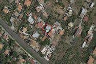 Immagine n0 - Immobile residenziale - Lotto 0 - Trabia - PA - Asta 12617