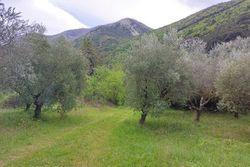 Terreno agricolo tra ferrovia e autostrada - Lotto 12663 (Asta 12663)