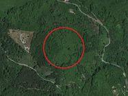 Immagine n1 - Terreno di 7020 mq con noccioleto - Asta 1268