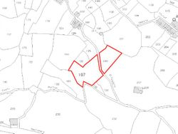 sqm land with hazelnut - Lot 1269 (Auction 1269)