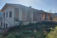 Immagine n0 - Four-family apartment and garden - Asta 12696